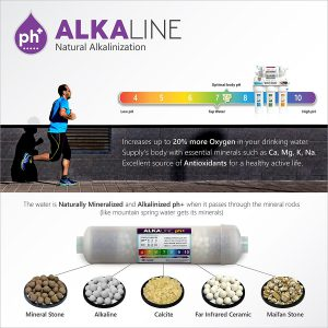 Express Water Alkaline Remineralization Filter